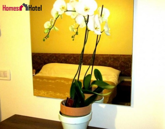 Exclusive 3 BD Apartment in Beirut